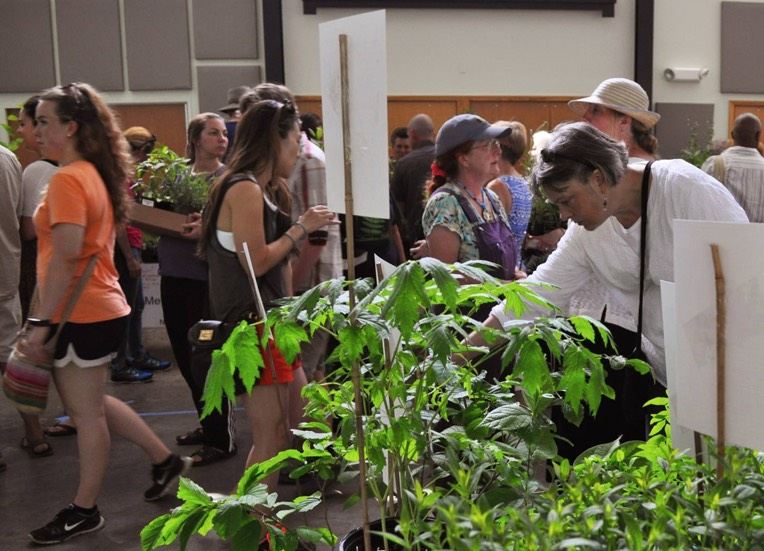 people at plant sale