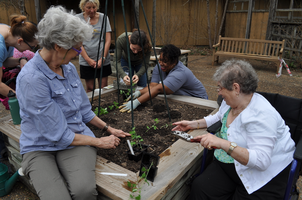 horticultural therapy in the Garden