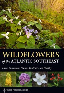 cover of Wildflowers of the Atlantic Southeast book