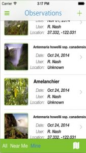Screenshot from the FloraQuest app showing plant observations