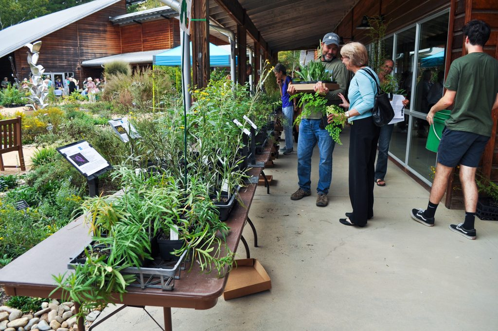 Trays of plants for sale set out on long tables outdoors at our Fall Plant Sale.