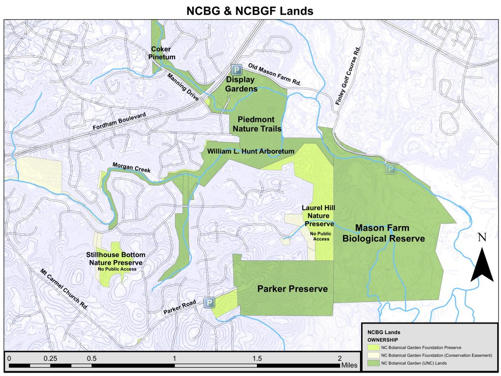 Map of NCBG and NCBGF lands in southern Chapel Hill, including our display gardens and Piedmont Nature Trails, Mason Farm Biological Reserve, Parker Preserve, Coker Pinetum, and more.