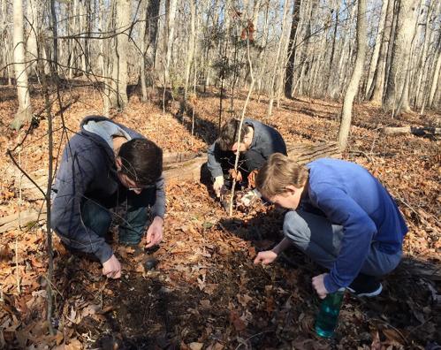UNC Herbarium volunteers searching for truffles