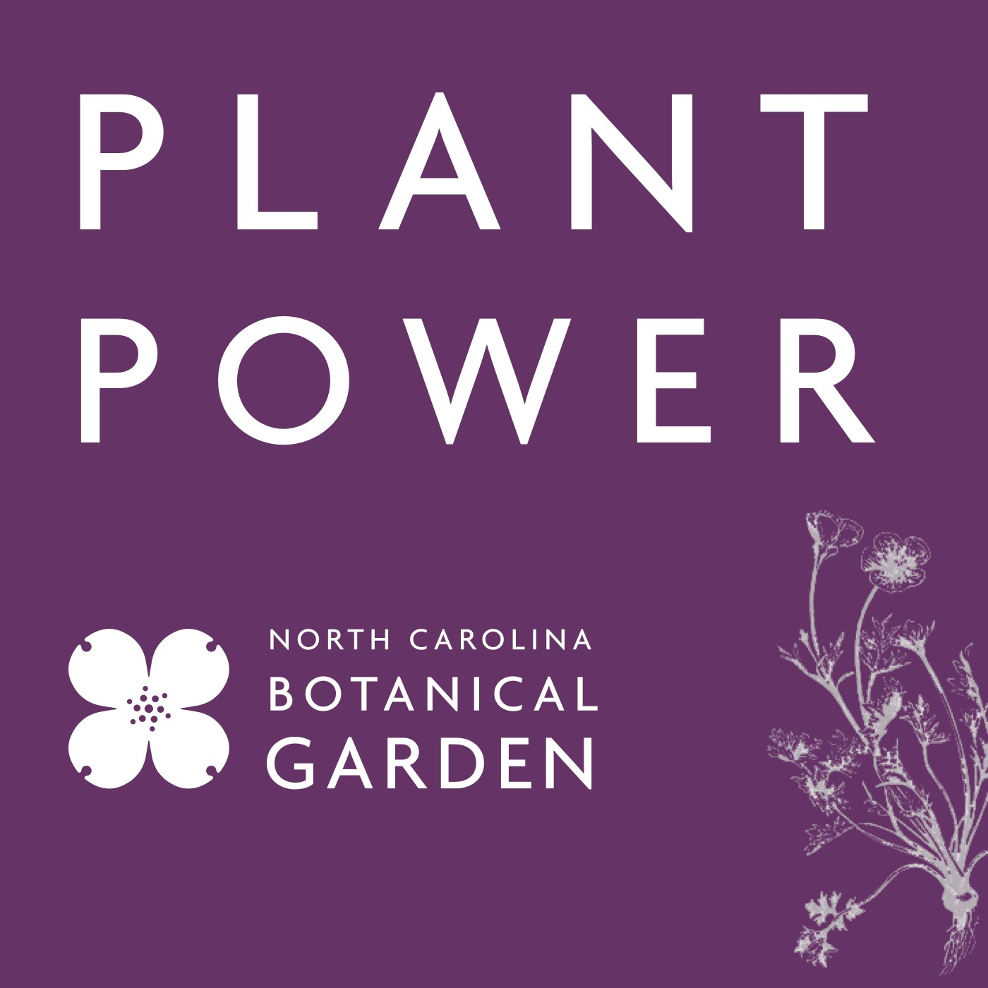 Plant Power podcast cover. The words Plant Power and the NCBG logo are in white on a dark purple background.