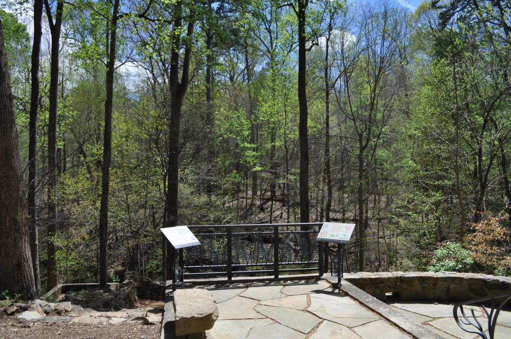 A sunny, stone terrace looking out into the woods in spring.