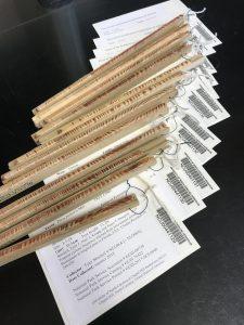 tree core specimens