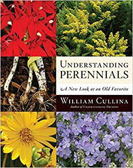 Understanding Perennials book cover