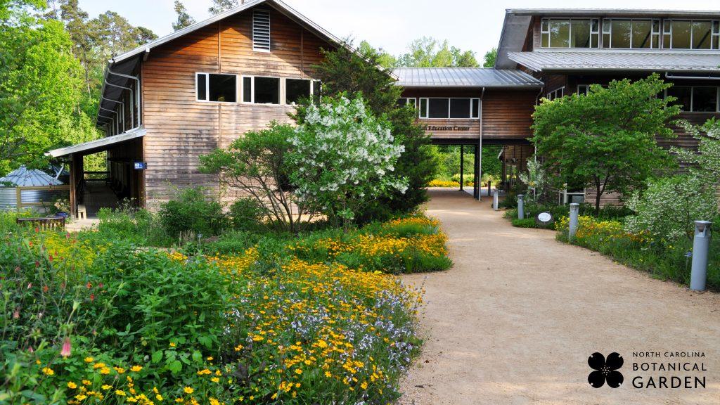 Entrance to the Garden desktop or Zoom background