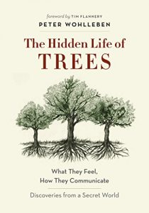 cover of hidden life of trees