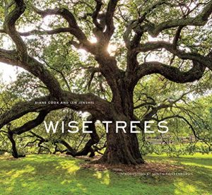 cover of wise trees
