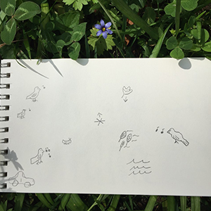 sample sound map: a white page with drawings of what the mapper heard