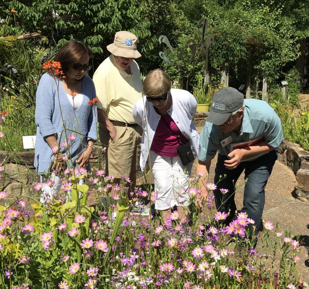 tour at the Garden
