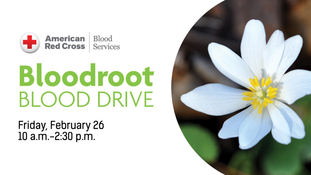 White bloodroot flower with text reading Bloodroot Blood Drive, Friday, February 26, 10 a.m. to 2:30 p.m.