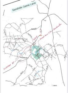 Illustration for Feb 2021 newsletter article on Lobelia batsonii by B.A. Sorrie