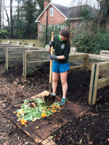 A volunteer uses a shovel to chop compost at the Carolina Community Garden.