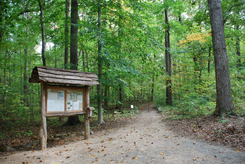 An information kiosk stands to the left of a wooded trail in Battle Park.