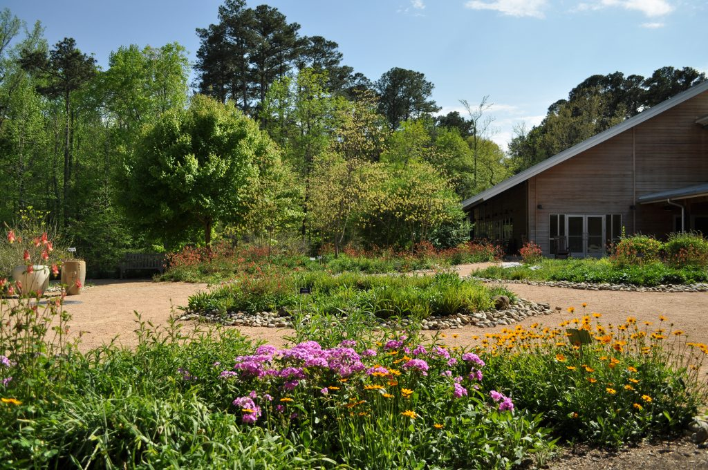 A view of the Courtyard Gardens in spring, with mountain phlox, tickseed, and columbine in bloom.