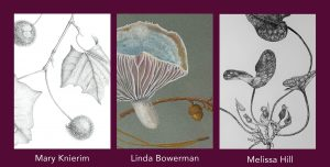 Flyer for the 2021 Botanical Art and Illustration graduate exhibit showing one illustration by each of the three exhibiting artists.