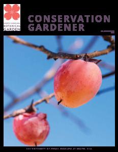 Fall/Winter 2021 magazine cover