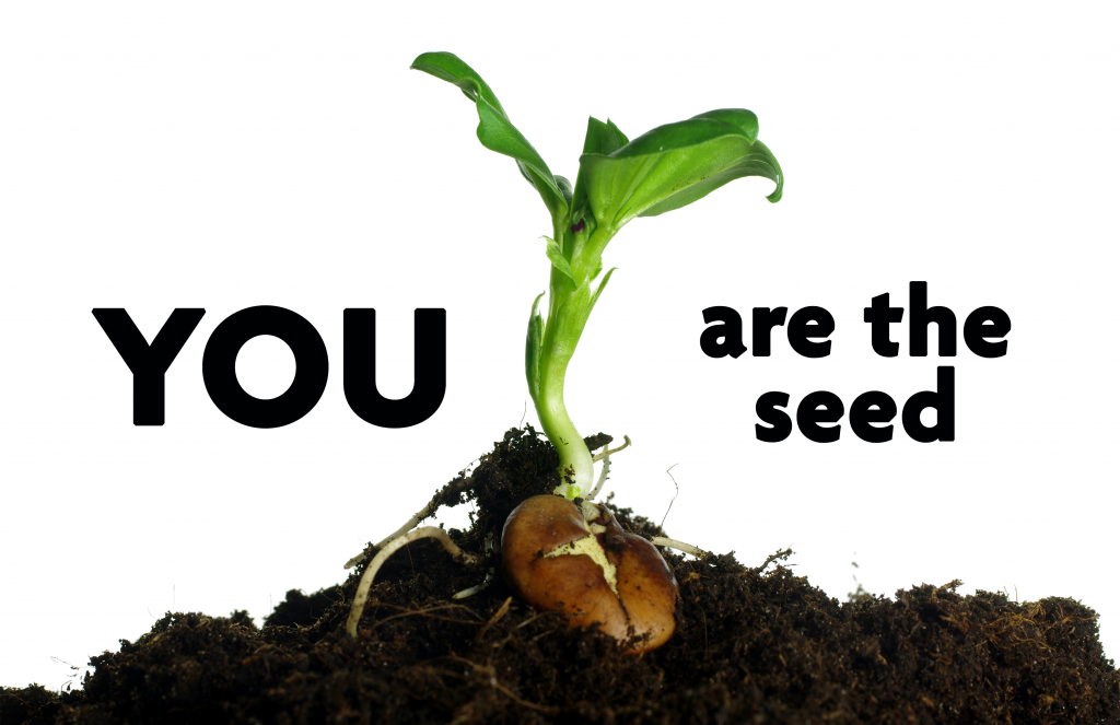 YOU are the seed in text with a seedling